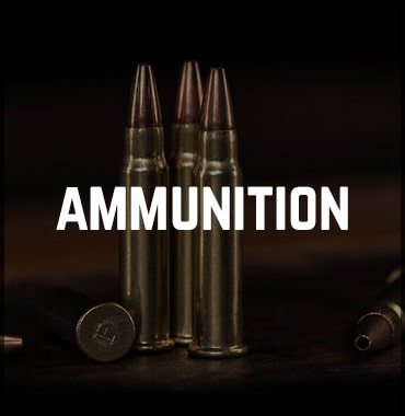 Find Ammunition